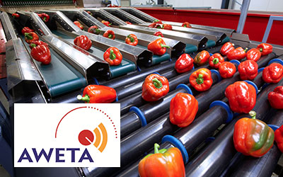 Aweta Fruit & Vegetable Sorting & Packing